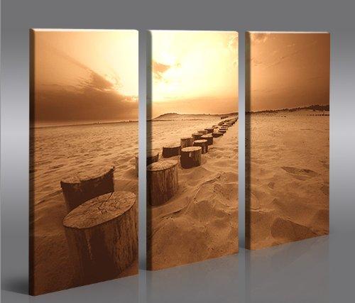 Cap ferret 3 quadri moderni su tela pronti da appendere montata su pannelli in legno - Quadri da appendere in bagno ...