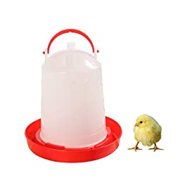 1 Gallon Chicken Waterer Plastic Poultry Fount Complete Water Fountain with Red Base