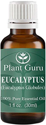 Eucalyptus Essential Oil. 30 ml. (1 oz.) 100% Pure, Undiluted, Therapeutic Grade.