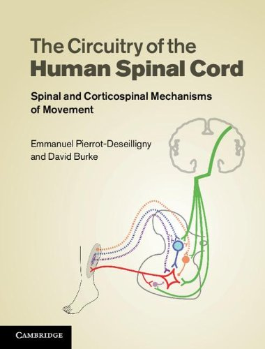 The Circuitry of the Human Spinal Cord Hardback