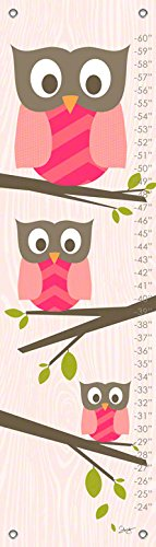 Oopsy Daisy Growth Charts Olivia The Owl by Stacy Amoo Mensah, 12 by 42-Inch