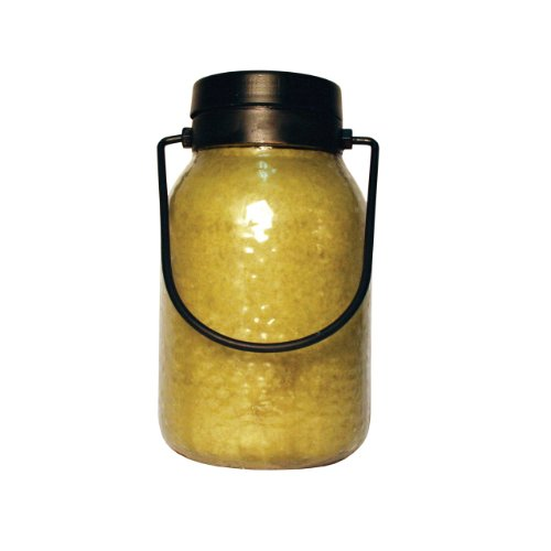 A Cheerful Giver Buzz Off Citronella Simplicity Lantern Jar Candle, 16-Ounce