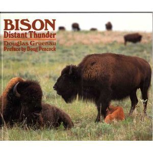 Bison: Distant Thunder