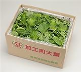 JAあいち経済連 愛知県産 大葉(加工用) 3kg(バラ詰め)
