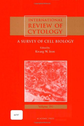 International Review Of Cytology, Volume 191: A Survey Of Cell Biology (International Review Of Cell & Molecular Biology)