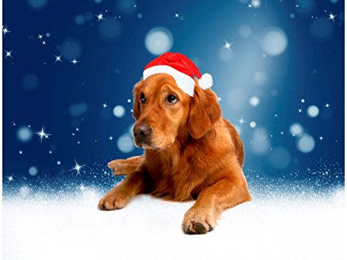 Christmas Cute Golden Retriever Dog Santa Hat Snow Doormat
