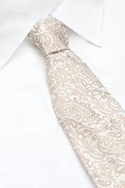 Autograph Pure Silk Embroidered Paisley Tie [T12-5925-S]