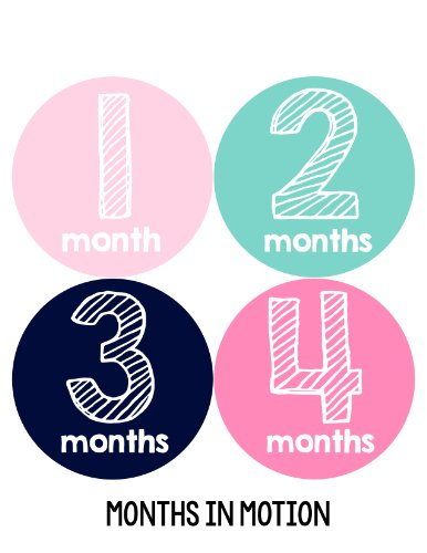 Months in Motion 111 Monthly Baby Stickers Baby Girl Milestone Age Sticker Photo