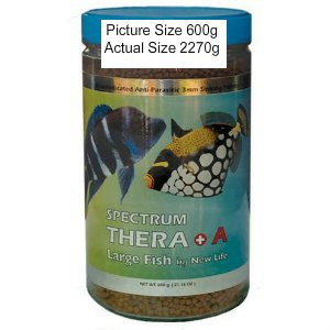 New Life International Spectrum Thera+ A 3mm Large Sinking 2000g