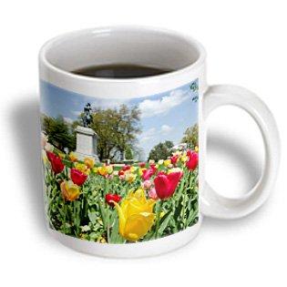 Danita Delimont - Cindy Miller Hopkins - Flowers - Usa, Tennessee, Nashville. Satue Of Andrew Jackson With Spring Tulips. - 11Oz Mug (Mug_190287_1)