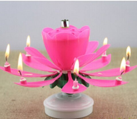 The Amazing Singing Opening Flower Happy Birthday Candle 2 Pack Pink Color