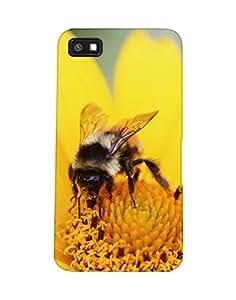 Mobifry Back case cover for BlackBerry Z10 Mobile (Printed design)
