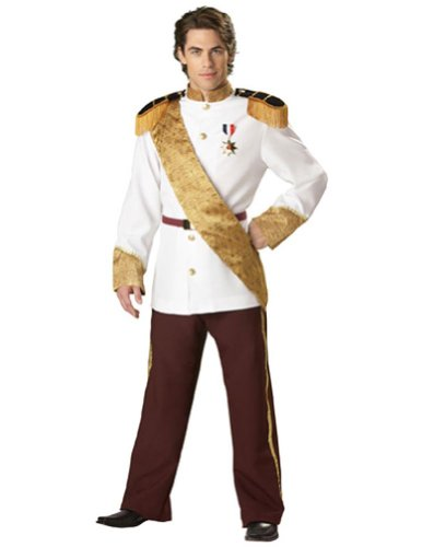 Prince Charming Large Halloween Costume - Adult Large