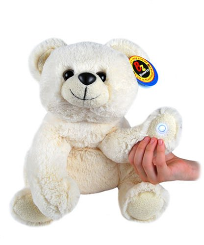 Beamerzzz Flashlight Teddy Bear 18