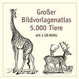 5000 animals = 5000 tiere = 5000 animaux = 5000 animali = 5000 animales = 5000 animais
