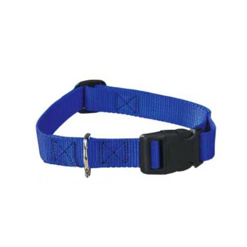 Guardian Gear Nylon Adjustable Dog Collar With Plastic Buckles, 1-Inch, Blue