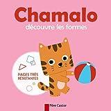 Chamalo découvre les formes