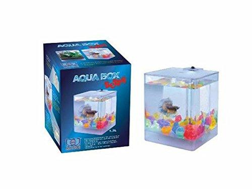 PERFECT NEW AA AQUA BOX BETTA FISH TANK AQUARIUM 1.3L CUBE SHAPE (Betta Fish Cube compare prices)