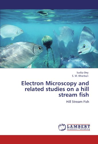 Electron Microscopy And Related Studies On A Hill Stream Fish