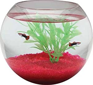 Aquarium fish tank bowl round glass 1 5 for 5 gallon glass fish tank