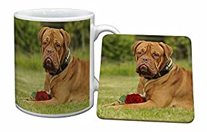 Dogue De Bordeaux with Rose Mug and Coaster Animal Gifts