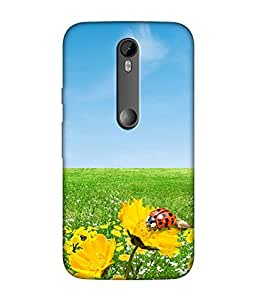 Motorola Moto G Turbo Designer / Printed Back Cover -(nature)