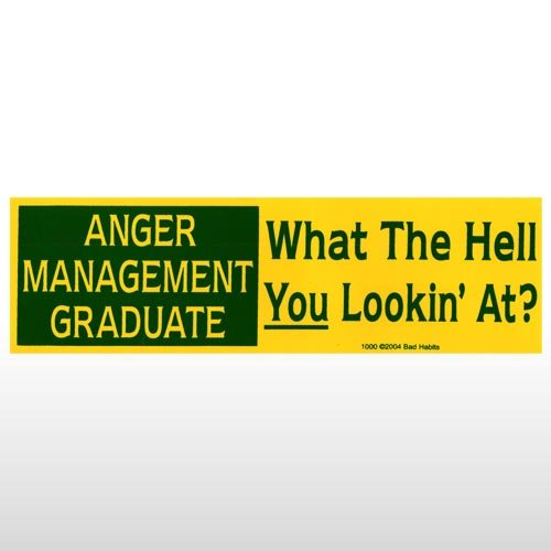 318 - Anger Management Bumper Sticker