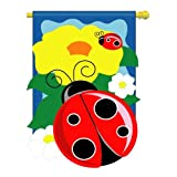 Lady Bug Decorative Banner