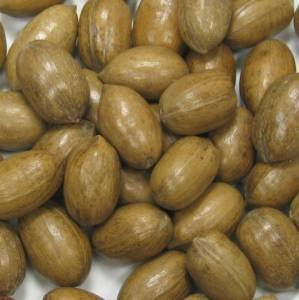 In Shell Polished Natural Pecans - 25 lb.