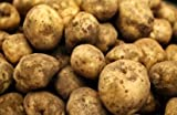 ORGANIC POTATOES 1KG FROM ARTISANA GROCERY