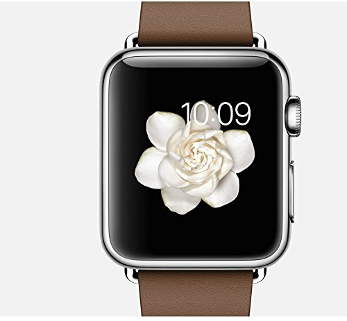 Apple Watch 38 Mm Brown Modern Buckle