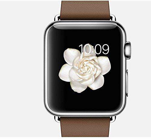 Apple Watch 38 Mm Brown Modern Buckle