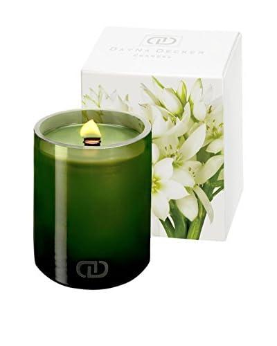 DayNa Decker 16-Oz. Zelia Botanika Candle