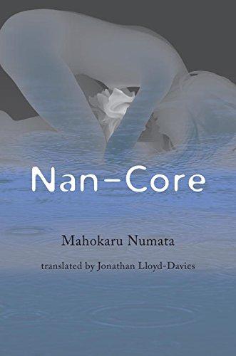 Nan-Core