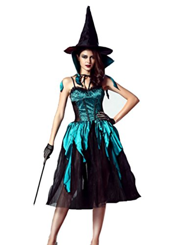 [NonEcho Adult Crafty Vixen Wicked Witch Costume] (Wicked Witch Of The West Costume Disney)