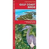 Gulf Coast Birds: A Folding Pocket Guide to Familiar Species (Pocket Naturalist Guide Series)