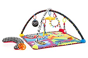 Sassy Developmental Rock And Roll Infant Play Gym
