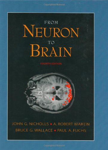 From Neuron to Brain: A Cellular and Molecular Approach...