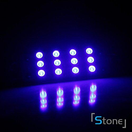 2x-43mm-blue-rigid-loop-211-2-212-2-578-12-smd-led-bulb-for-interior-door-light