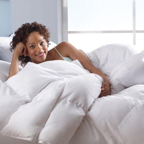 Better than Down All-Season Comforter