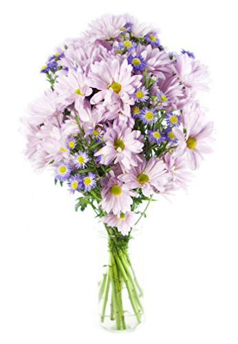 Cheerful Daisy Bouquet – With Vase