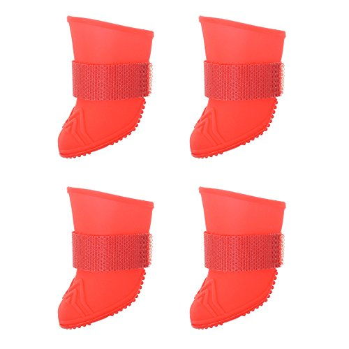 f86012499293a Top Best 5 jelly wellies for sale 2016 | BOOMSbeat