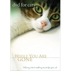DVD For Cats: While You Are Gone