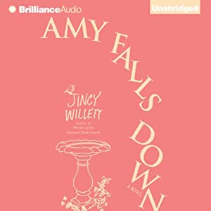 Amy Falls Down: A Novel | [Jincy Willett]