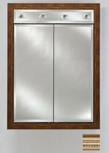 Signature Double Door Medicine Cabinet Lights Finish: Roman Pewter, Size: 31