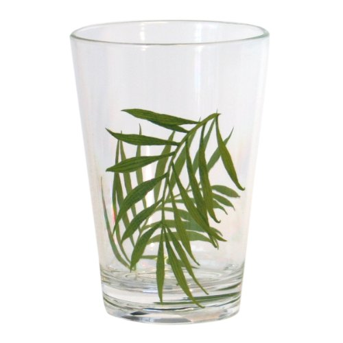 Corelle Coordinates Bamboo Leaf 8 Ounce Acrylic Glasses, Set of 6