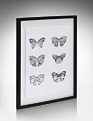 Conran Multi Butterfly Wall Art