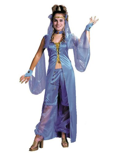 Dreamy Genie Plus Sz Halloween Costume - Adult Plus