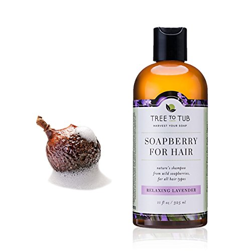 Natural Soapberry Organic Shampoo
