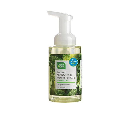 Cleanwell All Natural Anti Bacterial Foaming Hand Soap, Spearmint Lime, 9.5 Ounce Bottle (Pack of 4) (Natural Antibacterial Soap compare prices)
